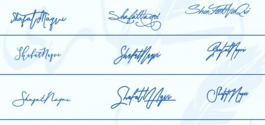 Signatures for Shafat Naqvi