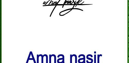 Amna nasir handwritten signature