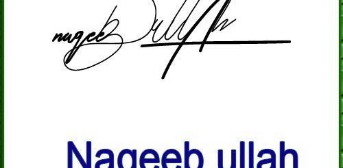 Naqeeb ullah handwritten signature
