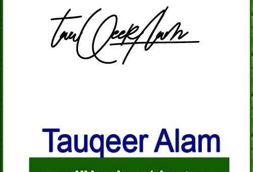 Tauqeer Alam handwritten signature