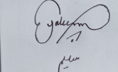 saleem Handwritten Signature