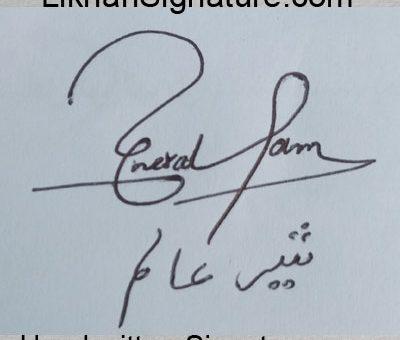 sher-alam Handwritten Signature