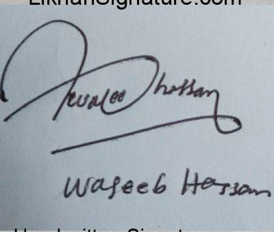 waseeb-hassan Handwritten Signature
