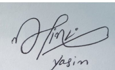 yasin Handwritten Signature