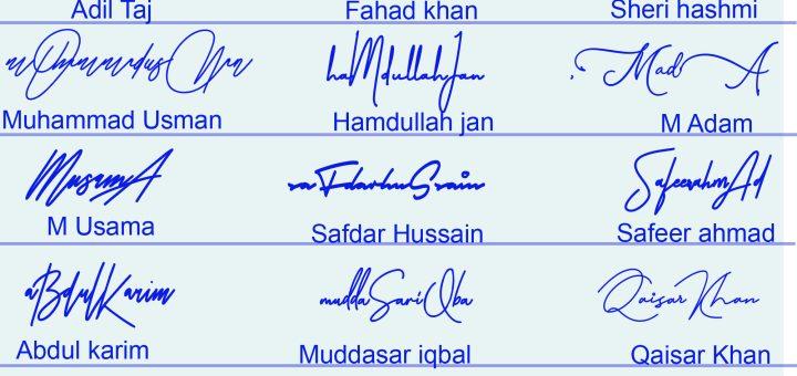 Professional Signature Styles