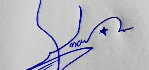 Anas Signature Styles