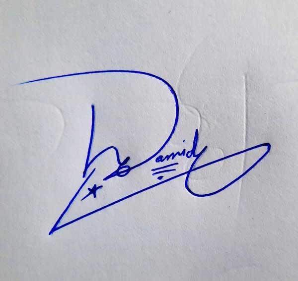 Hamid Signature Styles
