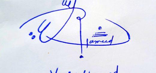 Yasir Hameed Signature Styles