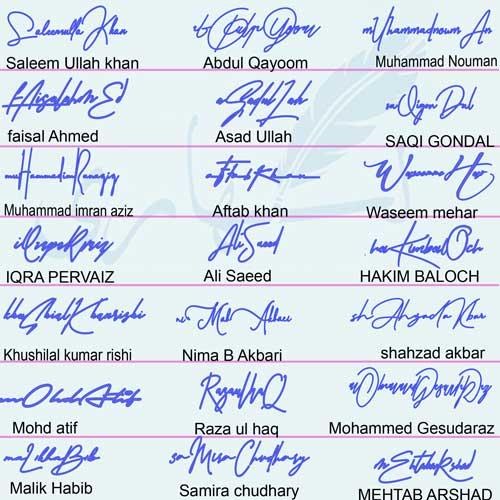 Online Handwritten Signature Style Sheet
